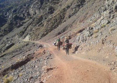 excursiones_actividades_gite-ifolou-tassaout